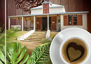 Auberge De Gaulle - Voh Caledonie - Eco-Musée du café